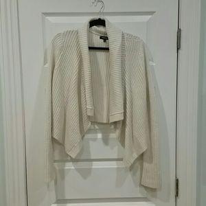 Express cropped metallic sweater